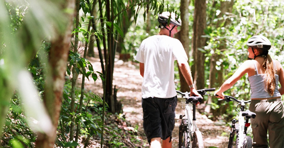 Awesome mountain biking tours and trails.